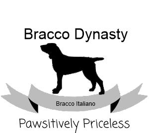 Bracco-Dynasty